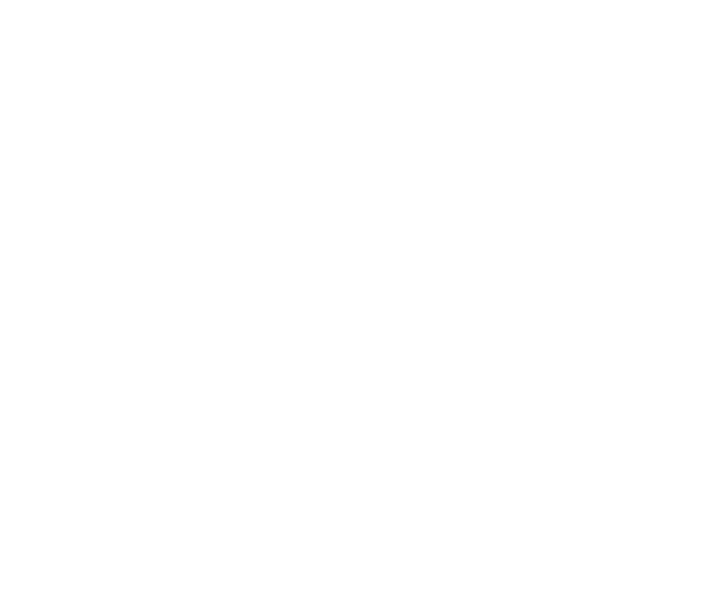 OP Fox Icon